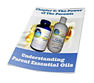 Chapter 6 Power of the Parents - Undestanding Parent Essential Oils